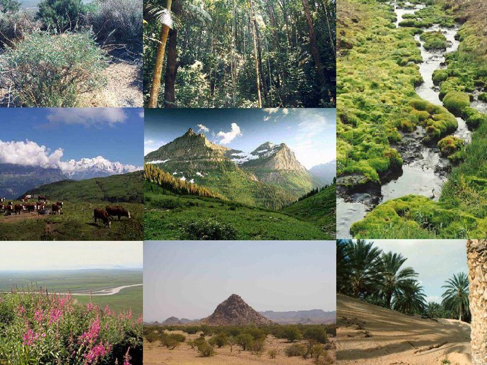 Les Zones climatiques Il y a différents types de climat dans le monde. Les plus chauds sont plus près de l'Équateur où la chaleur du soleil est plus f