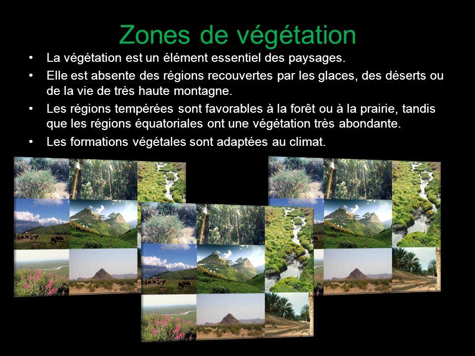 Zones de végétation La végétation est un élément essentiel des paysages. Elle est absente des régions recouvertes par les glaces, des déserts ou de la