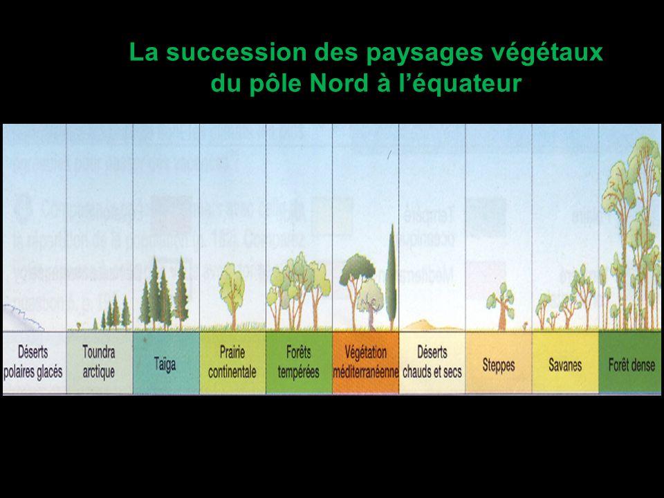 La succession des paysages végétaux du pôle Nord à léquateur
