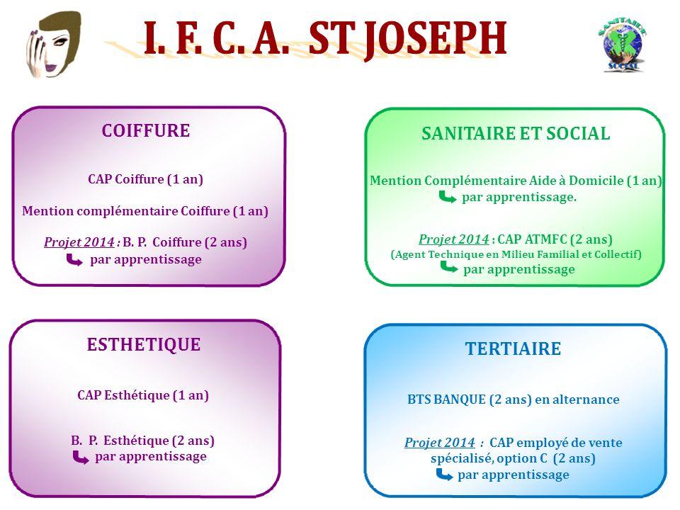 COIFFURE CAP Coiffure (1 an) Mention complémentaire Coiffure (1 an) Projet 2014 : B.