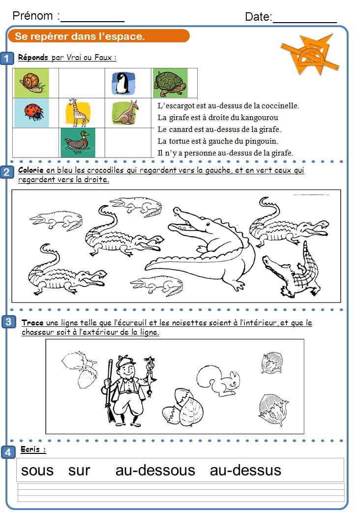 Réponds par Vrai ou Faux : Prénom :__________ Date:__________ 1 2 Colorie en bleu les crocodiles qui regardent vers la gauche, et en vert ceux qui reg