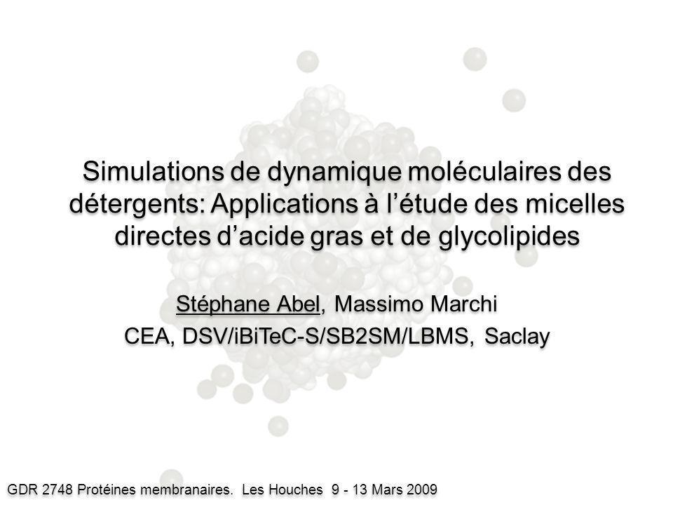Simulations de dynamique moléculaires des détergents: Applications à létude des micelles directes dacide gras et de glycolipides Stéphane Abel, Massim