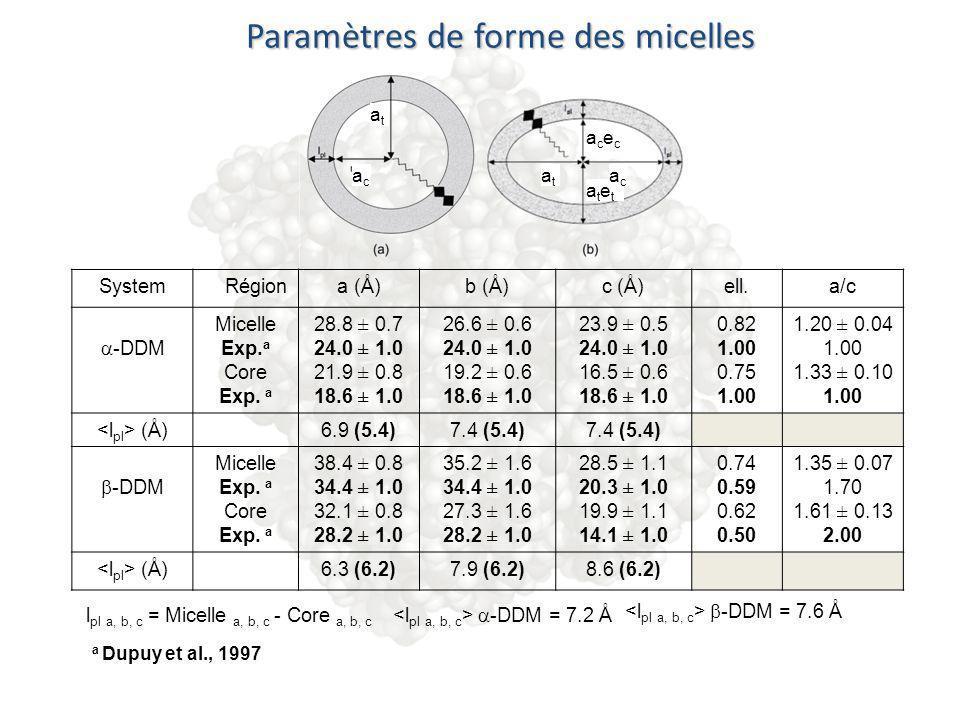 Paramètres de forme des micelles SystemRégiona (Å)b (Å)c (Å)ell.a/c -DDM Micelle Exp. a Core Exp. a 28.8 ± 0.7 24.0 ± 1.0 21.9 ± 0.8 18.6 ± 1.0 26.6 ±