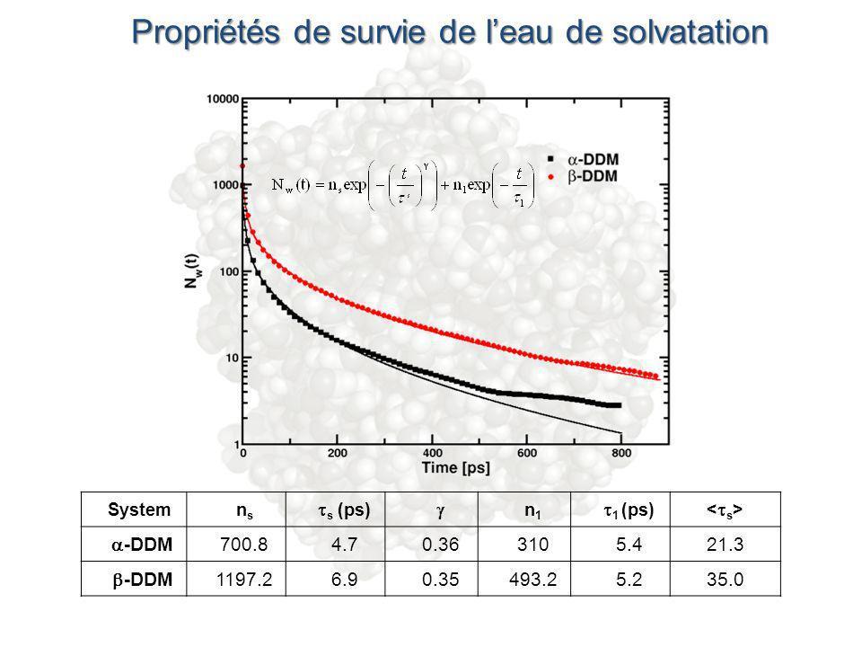 Propriétés de survie de leau de solvatation Systemnsns s (ps) n1n1 1 (ps) -DDM 700.84.70.363105.421.3 -DDM 1197.26.90.35493.25.235.0