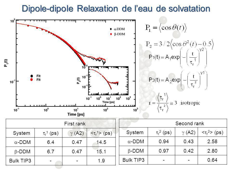 Dipole-dipole Relaxation de leau de solvatation P1= First rank System r 1 (ps) (A2) (ps) -DDM 6.40.4714.5 -DDM 6.70.4715.1 Bulk TIP3--1.9 Second rank