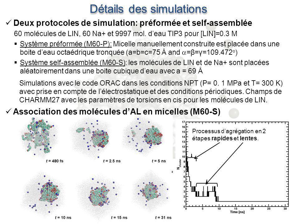 Détails des simulations Association des molécules dAL en micelles (M60-S) Deux protocoles de simulation: préformée et self-assemblée 60 molécules de L
