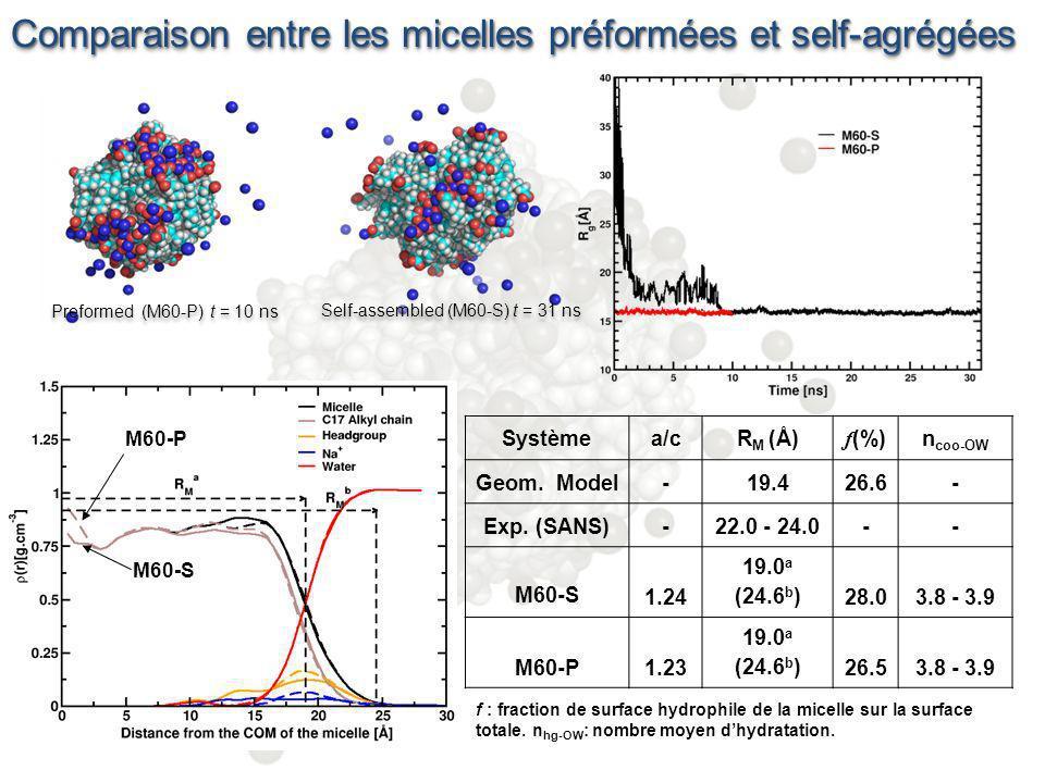 Conclusions Processus dagrégation des molécules en micelle de LIN, rapide ( < 10 ns) effectuée en deux étapes, rapide et lente (gouvernées par leffet hydrophobe) Pas dinfluence des conditions initiales sur la structure des micelles Micelle légèrement ellipsoïdale (a/c=1.2) de dimension R M 20 Å avec une structure interne similaire et une surface très majoritairement hydrophobe ( f = 26.5 – 28 %) Proposition dun model de structure pour les micelles dacide linoléique dans leau Perspectives: Comparer la structure des micelles en présence de sel dAg +