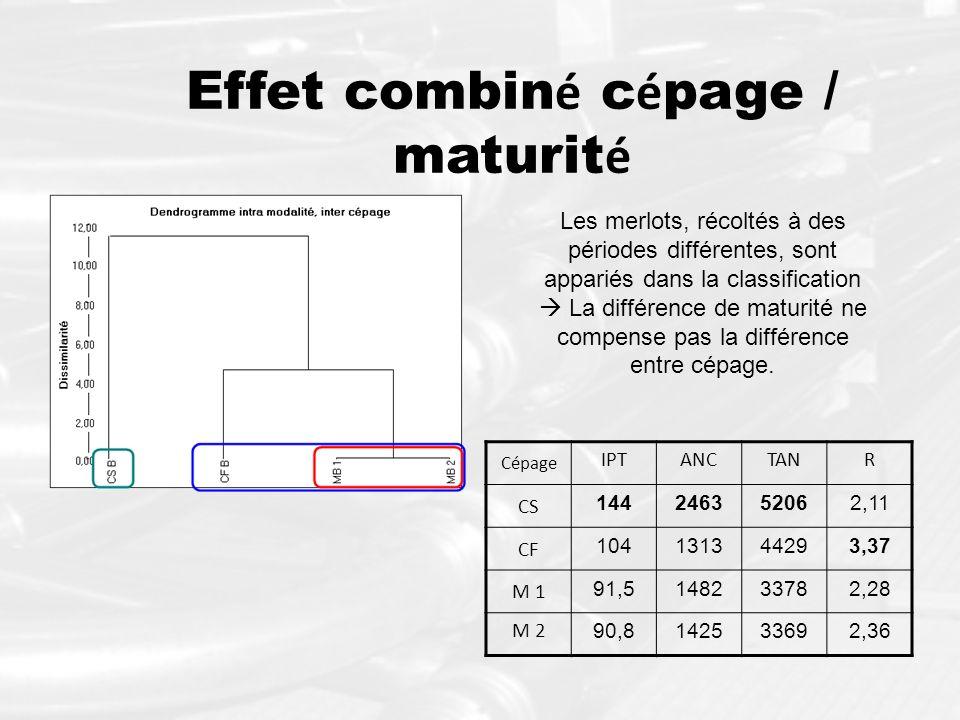 Effet combin é c é page / maturit é Cépage IPTANCTANR CS 144246352062,11 CF 104131344293,37 M 1 91,5148233782,28 M 2 90,8142533692,36 Les merlots, réc