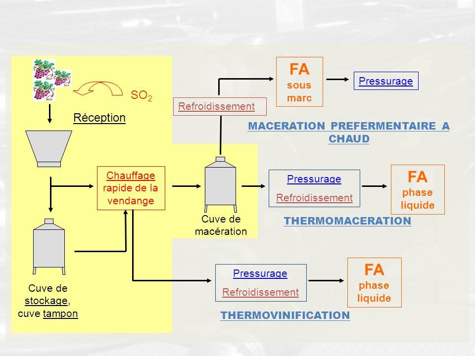 Cuve de macération Pressurage Refroidissement FA phase liquide THERMOMACERATION Cuve de stockage, cuve tampon Chauffage rapide de la vendange Réceptio