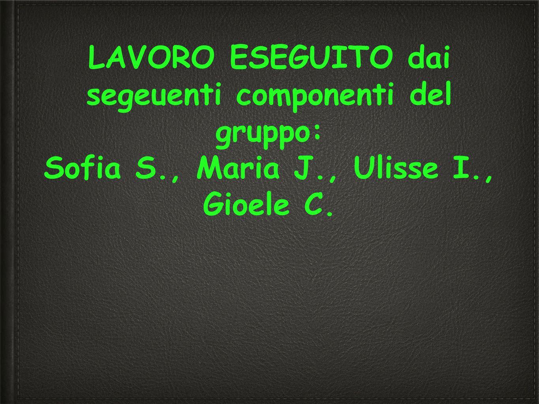 LAVORO ESEGUITO dai segeuenti componenti del gruppo: Sofia S., Maria J., Ulisse I., Gioele C.