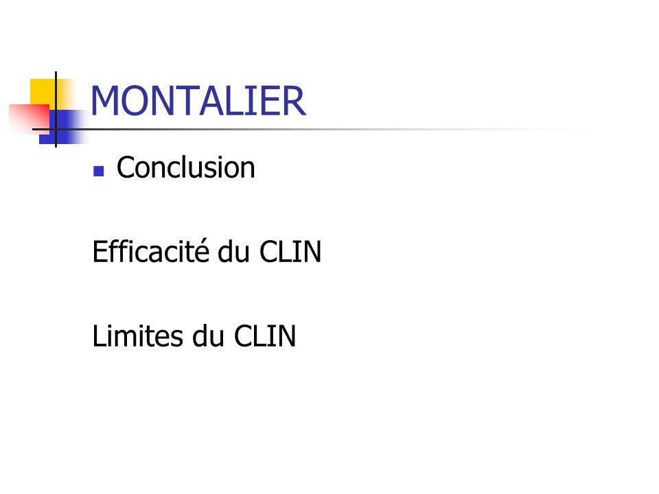 MONTALIER Conclusion Efficacité du CLIN Limites du CLIN