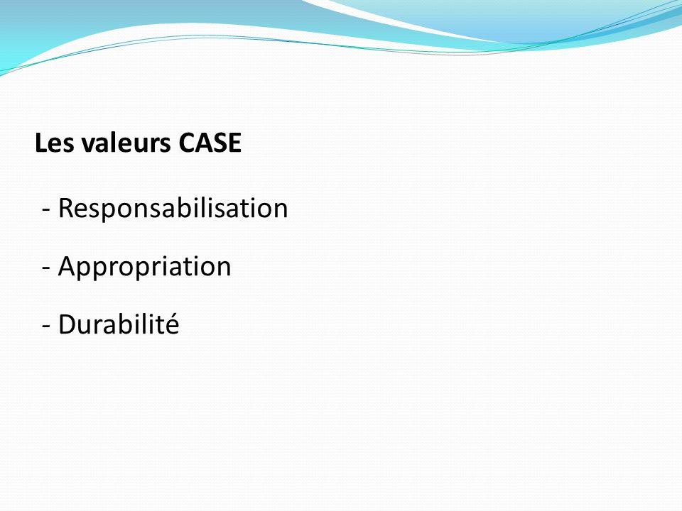 PRINCIPAUX DOMAINES DACTION Les actions du projet agissent directement sur le développement technologique, institutionnel et les compétences des acteurs (OP, distributeurs dintrants, commerçants/transformateurs, IMF/Banque etc..).