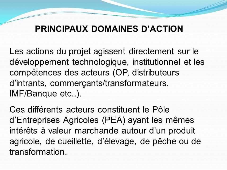 PRINCIPAUX DOMAINES DACTION Les actions du projet agissent directement sur le développement technologique, institutionnel et les compétences des acteu
