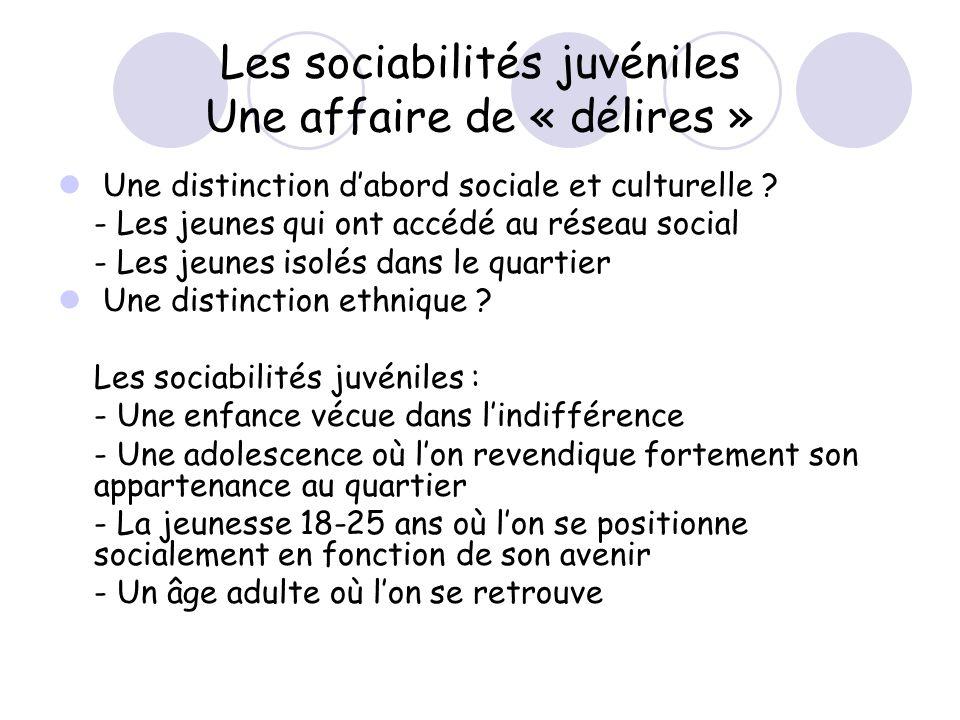 Les sociabilités juvéniles Une affaire de « délires » Une distinction dabord sociale et culturelle ? - Les jeunes qui ont accédé au réseau social - Le