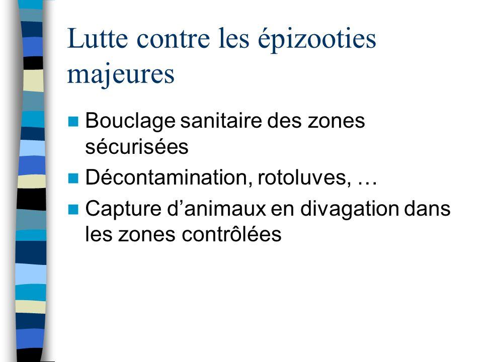 Lutte contre les épizooties majeures Bouclage sanitaire des zones sécurisées Décontamination, rotoluves, … Capture danimaux en divagation dans les zon