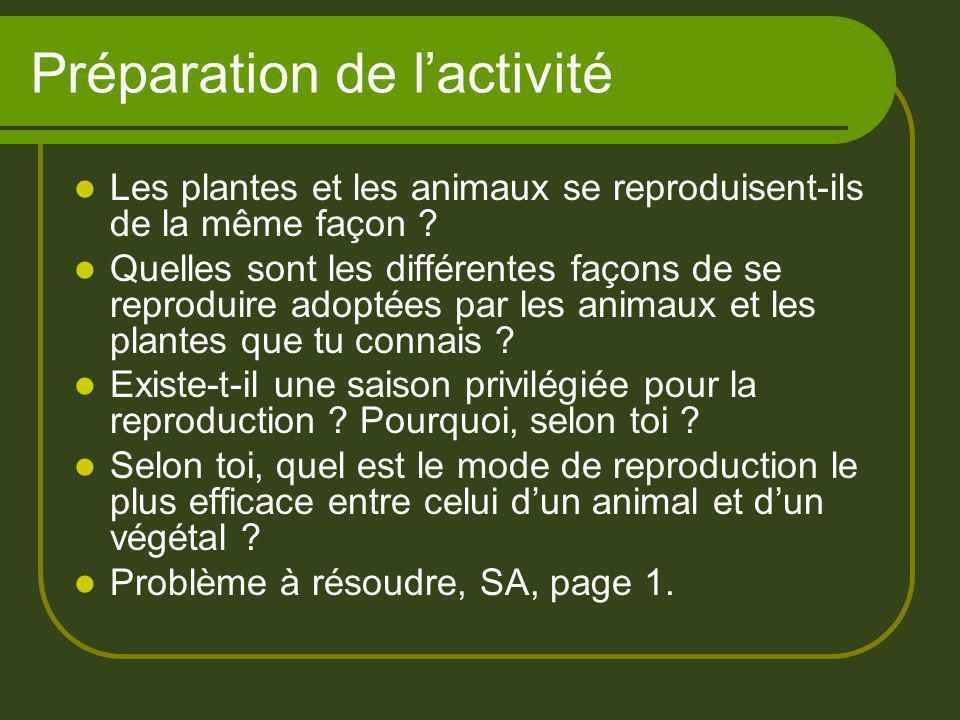 Préparation de lactivité Les plantes et les animaux se reproduisent-ils de la même façon ? Quelles sont les différentes façons de se reproduire adopté