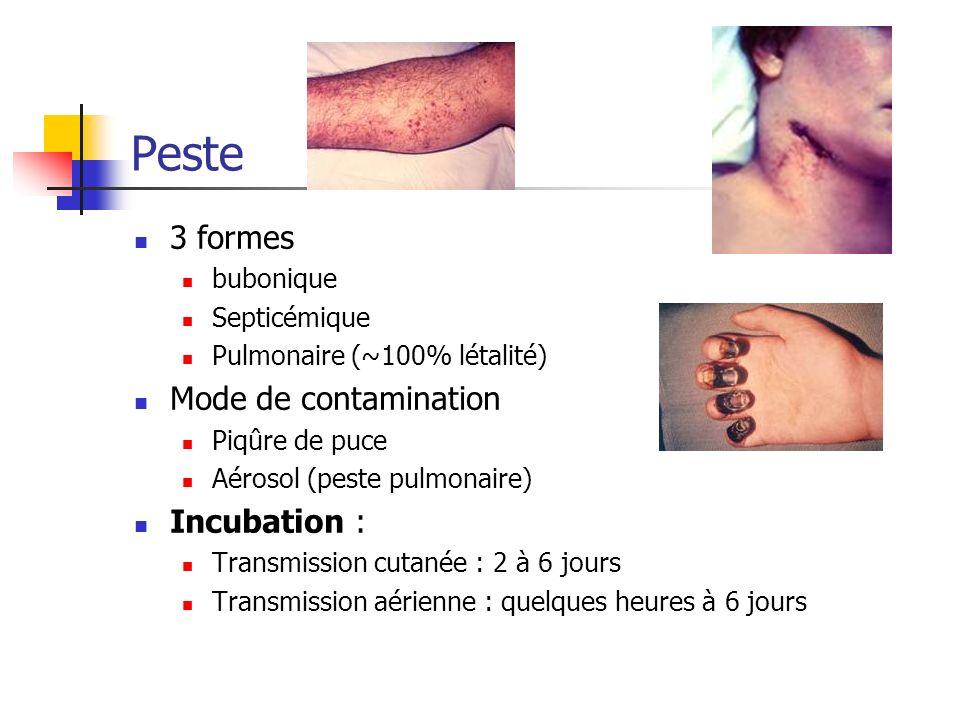 Peste 3 formes bubonique Septicémique Pulmonaire (~100% létalité) Mode de contamination Piqûre de puce Aérosol (peste pulmonaire) Incubation : Transmi