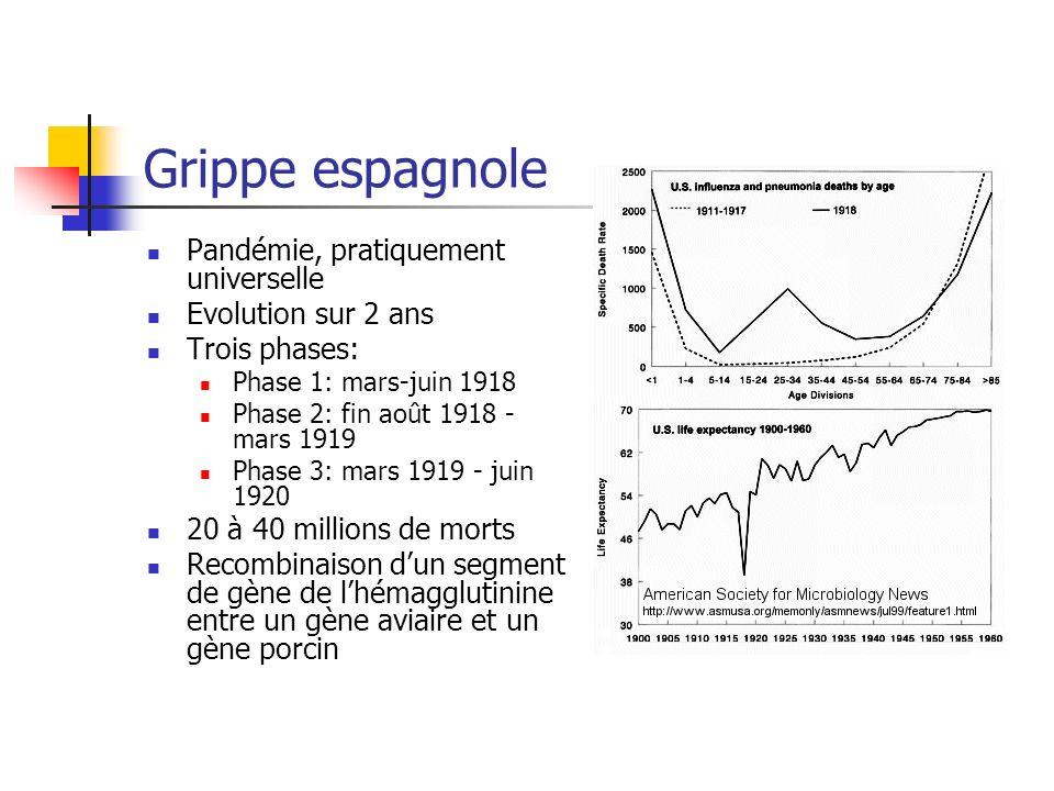 Grippe espagnole Pandémie, pratiquement universelle Evolution sur 2 ans Trois phases: Phase 1: mars-juin 1918 Phase 2: fin août 1918 - mars 1919 Phase