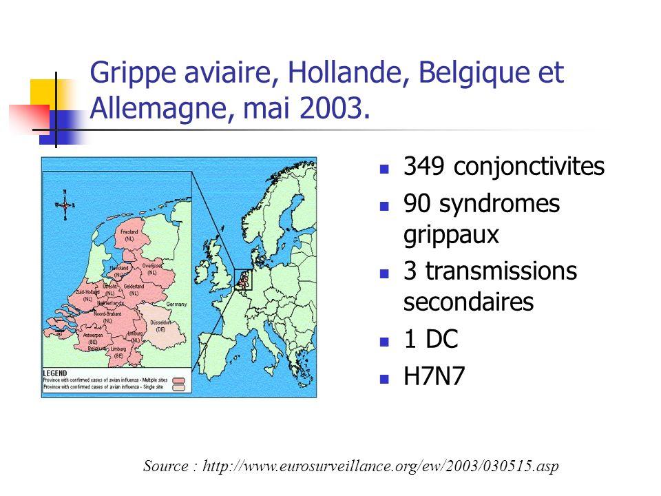 Grippe aviaire, Hollande, Belgique et Allemagne, mai 2003. 349 conjonctivites 90 syndromes grippaux 3 transmissions secondaires 1 DC H7N7 Source : htt