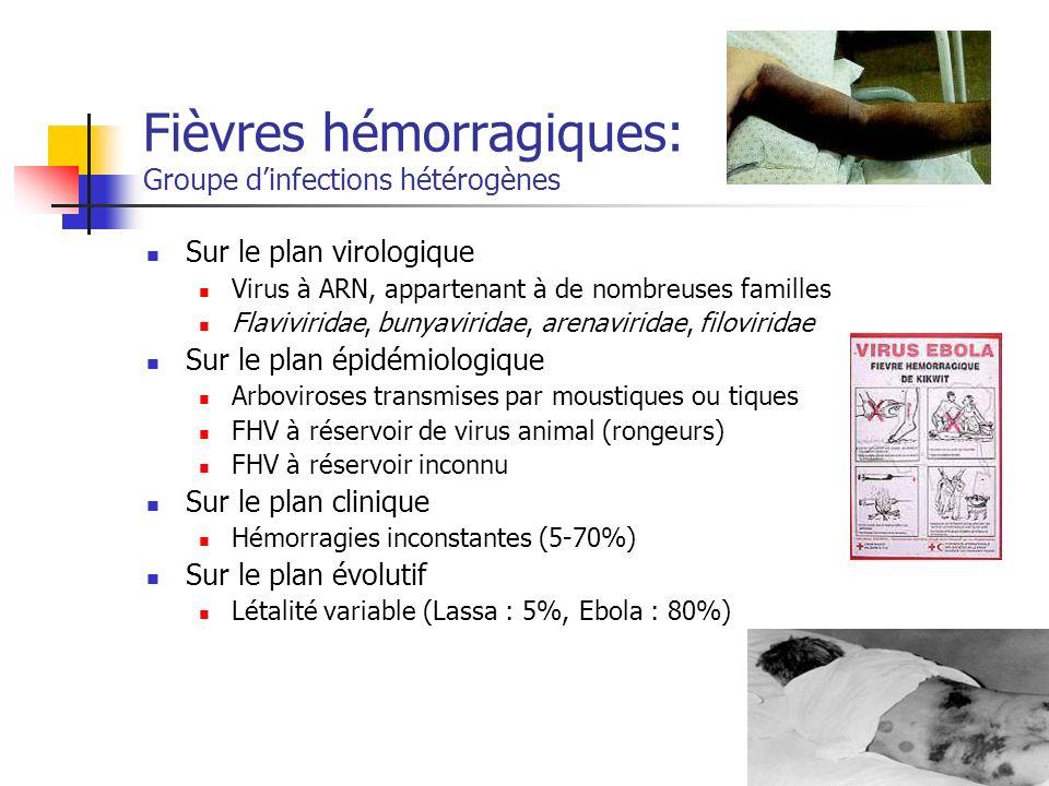 Fièvres hémorragiques: Groupe dinfections hétérogènes Sur le plan virologique Virus à ARN, appartenant à de nombreuses familles Flaviviridae, bunyavir