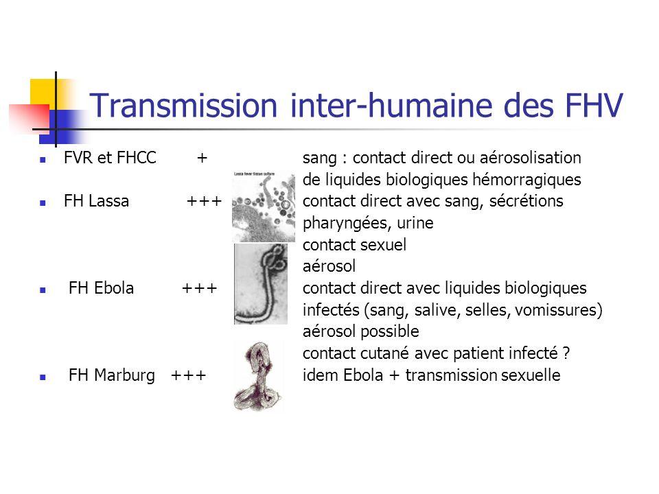 Transmission inter-humaine des FHV FVR et FHCC + sang : contact direct ou aérosolisation de liquides biologiques hémorragiques FH Lassa +++ contact di