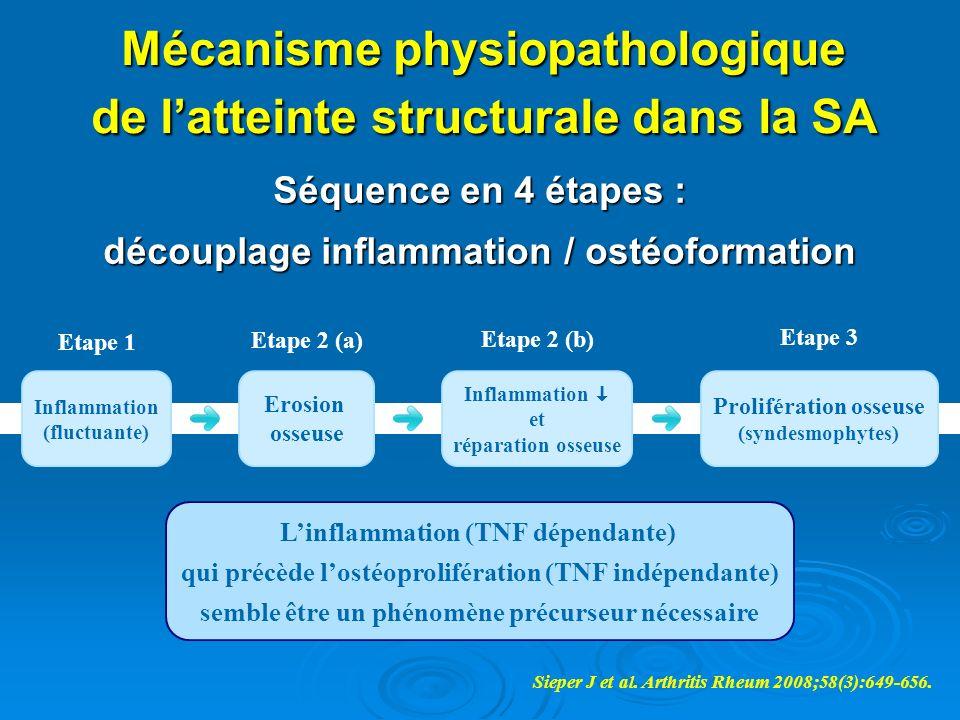 Mécanisme physiopathologique de latteinte structurale dans la SA Séquence en 4 étapes : découplage inflammation / ostéoformation Linflammation (TNF dé