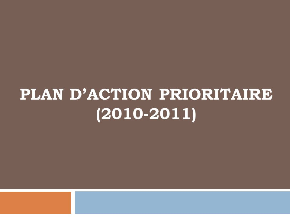 PLAN DACTION PRIORITAIRE (2010-2011)