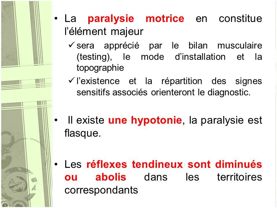 La paralysie motrice en constitue lélément majeur sera apprécié par le bilan musculaire (testing), le mode dinstallation et la topographie lexistence