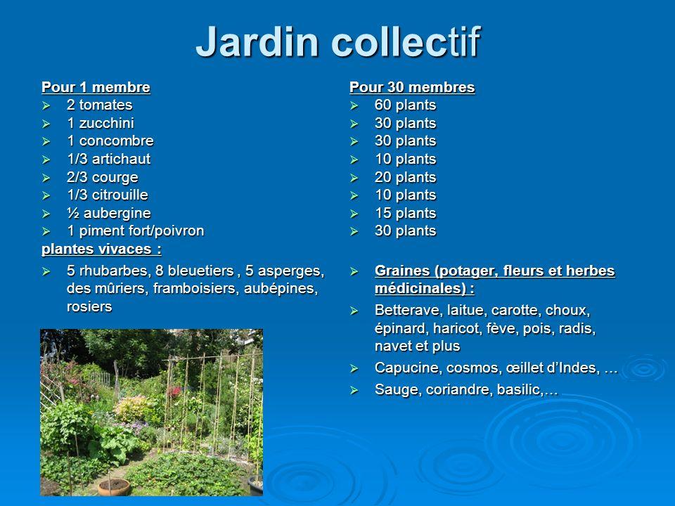 Jardin collectif Pour 1 membre 2 tomates 2 tomates 1 zucchini 1 zucchini 1 concombre 1 concombre 1/3 artichaut 1/3 artichaut 2/3 courge 2/3 courge 1/3