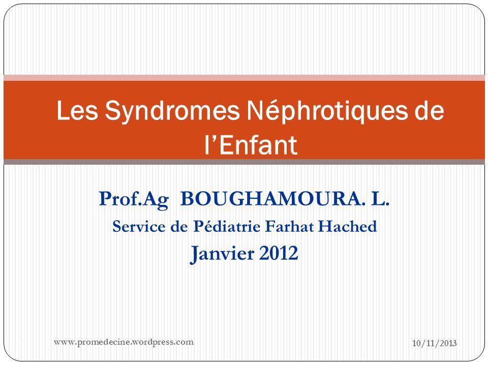 Prof.Ag BOUGHAMOURA. L. Service de Pédiatrie Farhat Hached Janvier 2012 10/11/2013 1 Les Syndromes Néphrotiques de lEnfant www.promedecine.wordpress.c
