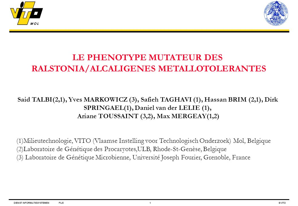 DIENST INFORMATIESYSTEMENFILE1 VITO LE PHENOTYPE MUTATEUR DES RALSTONIA/ALCALIGENES METALLOTOLERANTES Said TALBI(2,1), Yves MARKOWICZ (3), Safieh TAGH