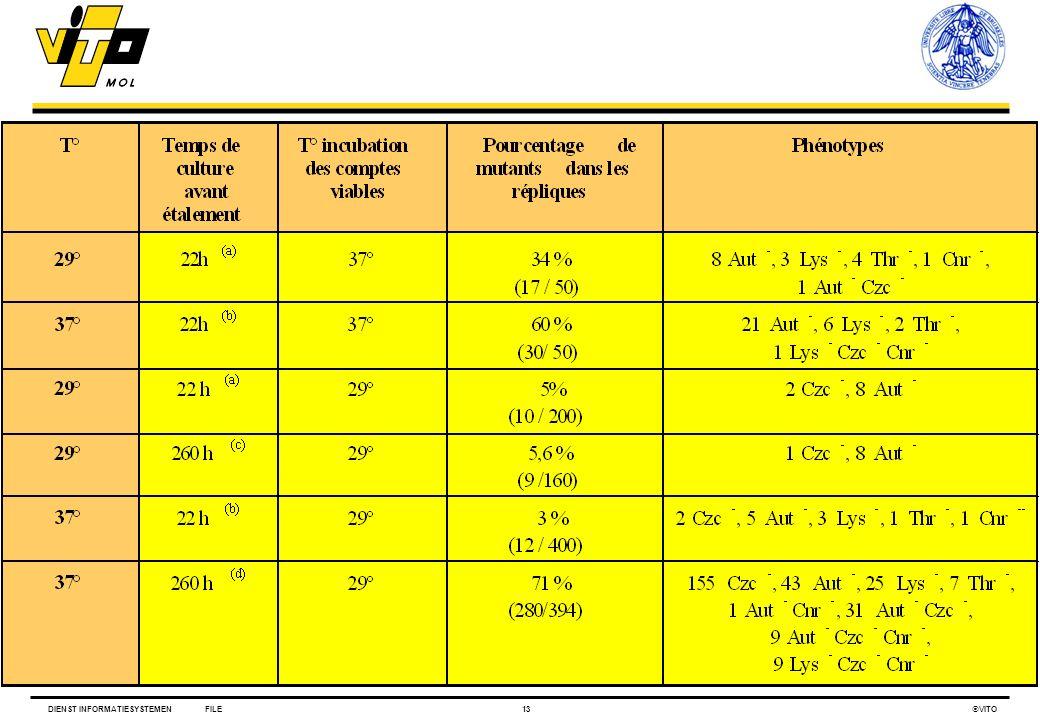 DIENST INFORMATIESYSTEMENFILE13 VITO