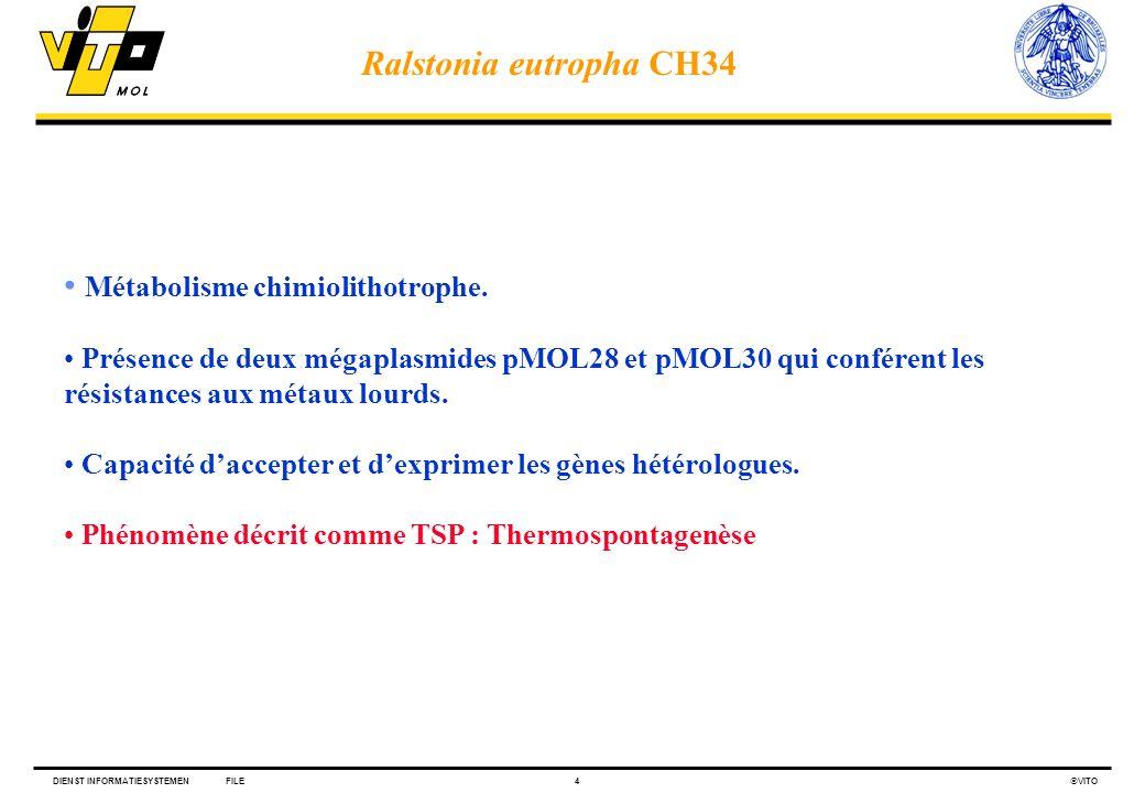 DIENST INFORMATIESYSTEMENFILE4 VITO Métabolisme chimiolithotrophe. Présence de deux mégaplasmides pMOL28 et pMOL30 qui conférent les résistances aux m