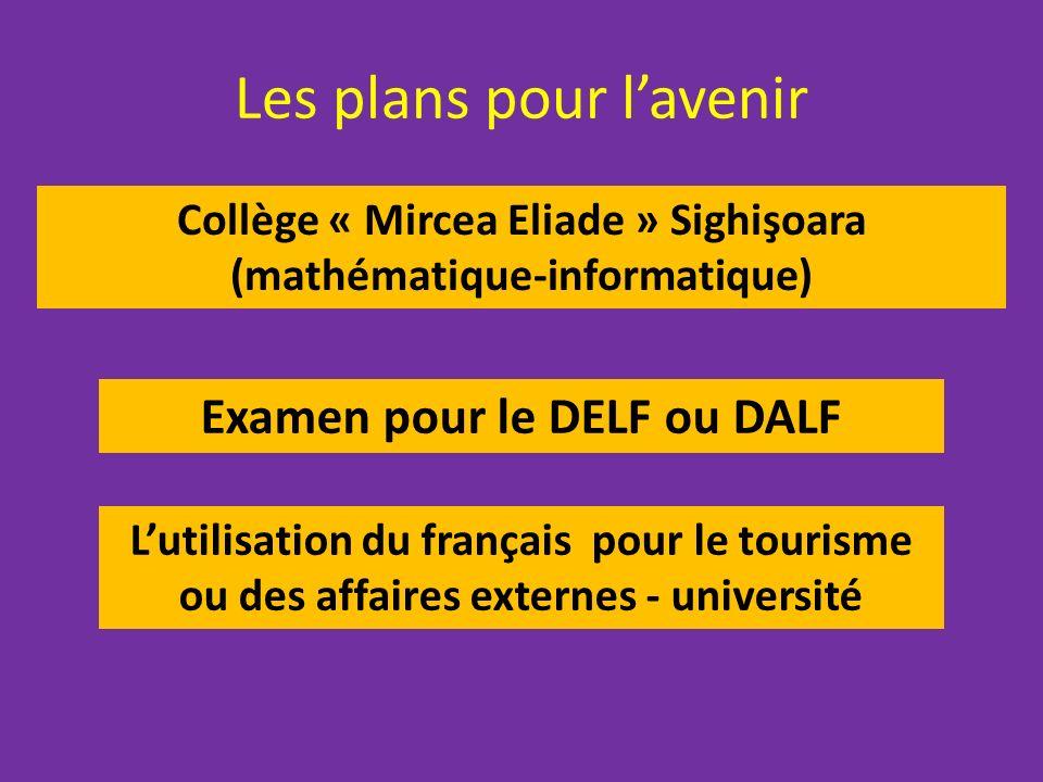 Les plans pour lavenir Collège « Mircea Eliade » Sighişoara (mathématique-informatique) Examen pour le DELF ou DALF Lutilisation du français pour le tourisme ou des affaires externes - université