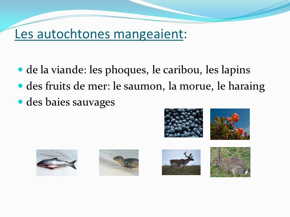 Les autochtones mangeaient: de la viande: les phoques, le caribou, les lapins des fruits de mer: le saumon, la morue, le haraing des baies sauvages