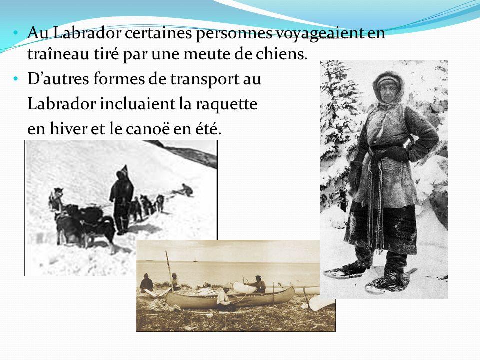 Au Labrador certaines personnes voyageaient en traîneau tiré par une meute de chiens. Dautres formes de transport au Labrador incluaient la raquette e