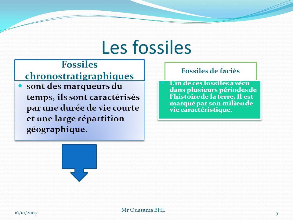 Les fossiles Fossiles chronostratigraphiques Fossiles de faciès sont des marqueurs du temps, ils sont caractérisés par une durée de vie courte et une large répartition géographique.