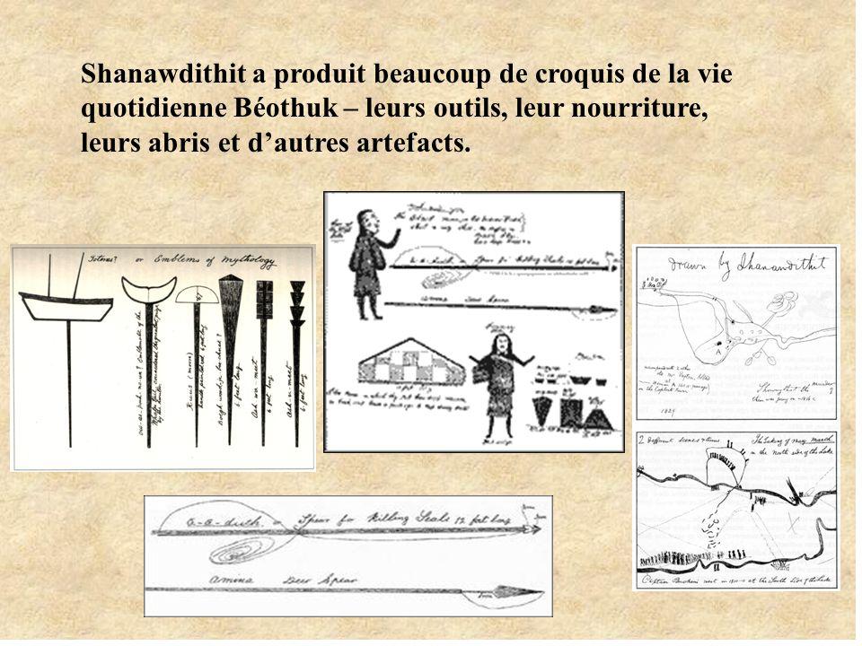 Shanawdithit a produit beaucoup de croquis de la vie quotidienne Béothuk – leurs outils, leur nourriture, leurs abris et dautres artefacts.