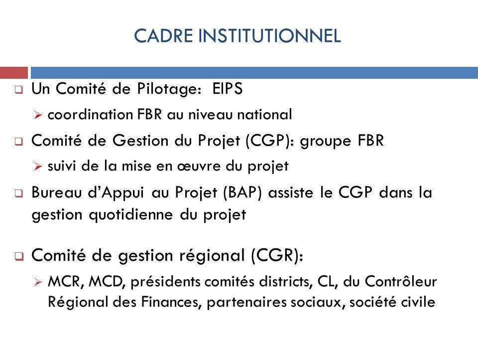 CADRE INSTITUTIONNEL Un Comité de Pilotage: EIPS coordination FBR au niveau national Comité de Gestion du Projet (CGP): groupe FBR suivi de la mise en