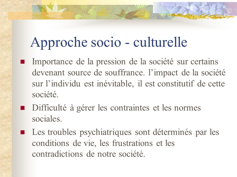 Approche socio - culturelle Importance de la pression de la société sur certains devenant source de souffrance. limpact de la société sur lindividu es