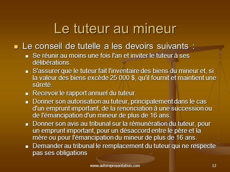 www.autorepresentation.com12 Le tuteur au mineur Le conseil de tutelle a les devoirs suivants : Le conseil de tutelle a les devoirs suivants : Se réun