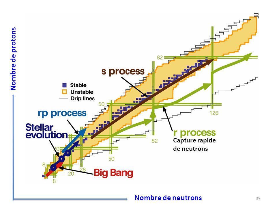 39 Nombre de neutrons Nombre de protons Capture rapide de neutrons