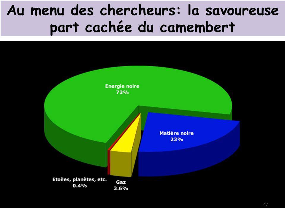 Au menu des chercheurs: la savoureuse part cachée du camembert 47