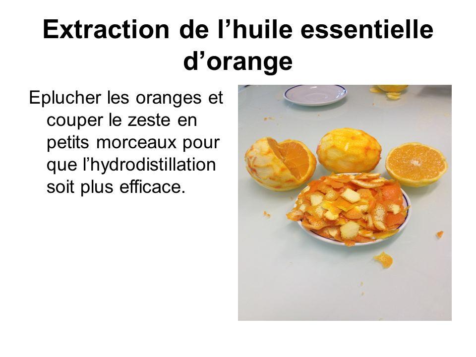 Extraction de lhuile essentielle dorange Eplucher les oranges et couper le zeste en petits morceaux pour que lhydrodistillation soit plus efficace.