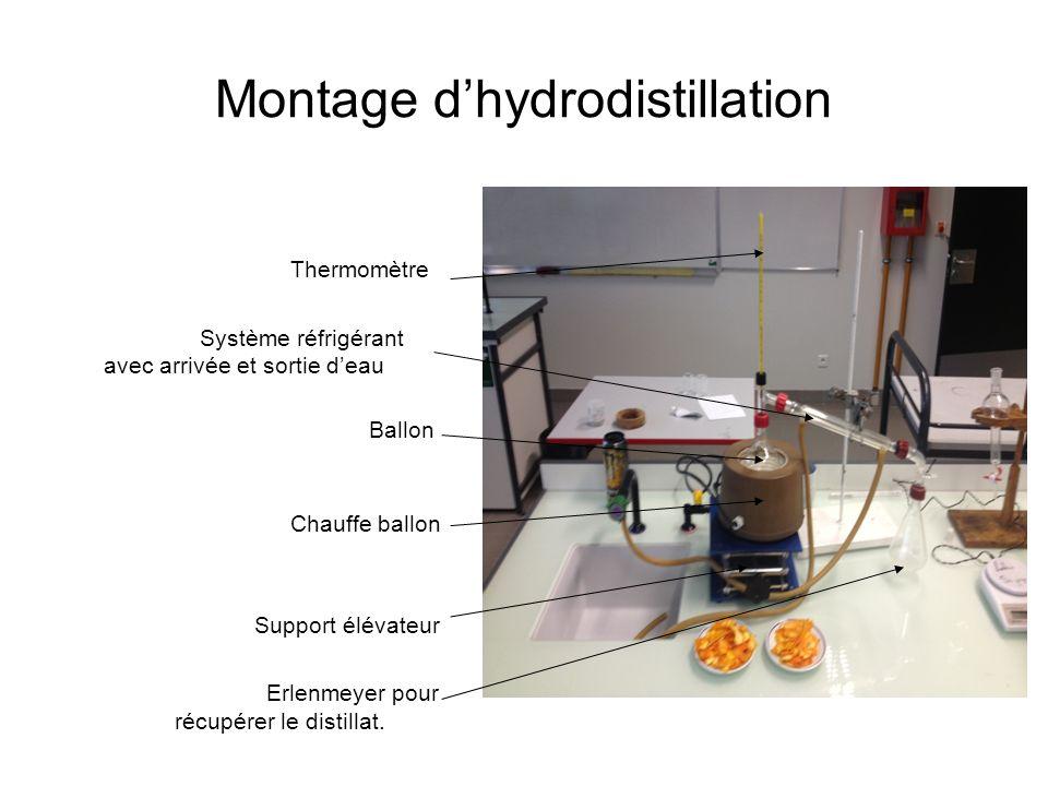 Montage dhydrodistillation Thermomètre Système réfrigérant avec arrivée et sortie deau Ballon Chauffe ballon Support élévateur Erlenmeyer pour récupér