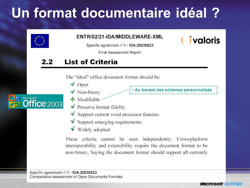 Un format documentaire idéal ? Au travers des schémas personnalisés