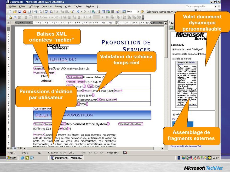 Volet document dynamique personnalisable Balises XML orientées métier Validation du schéma temps-réel Permissions dédition par utilisateur Assemblage