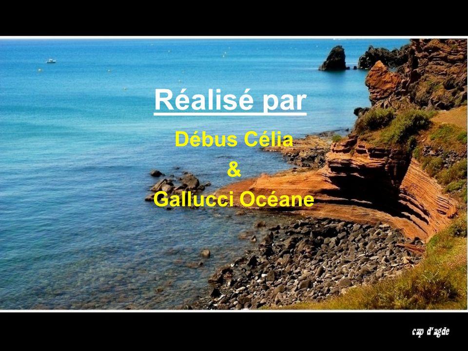 Réalisé par Débus Célia & Gallucci Océane