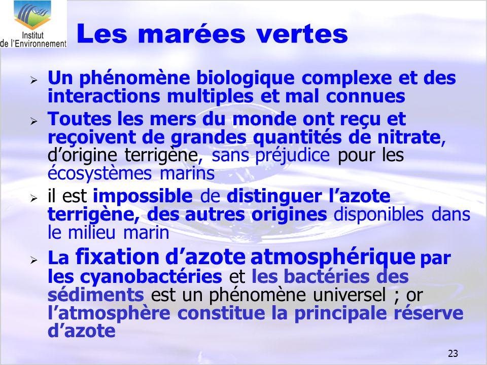 23 Un phénomène biologique complexe et des interactions multiples et mal connues Toutes les mers du monde ont reçu et reçoivent de grandes quantités d