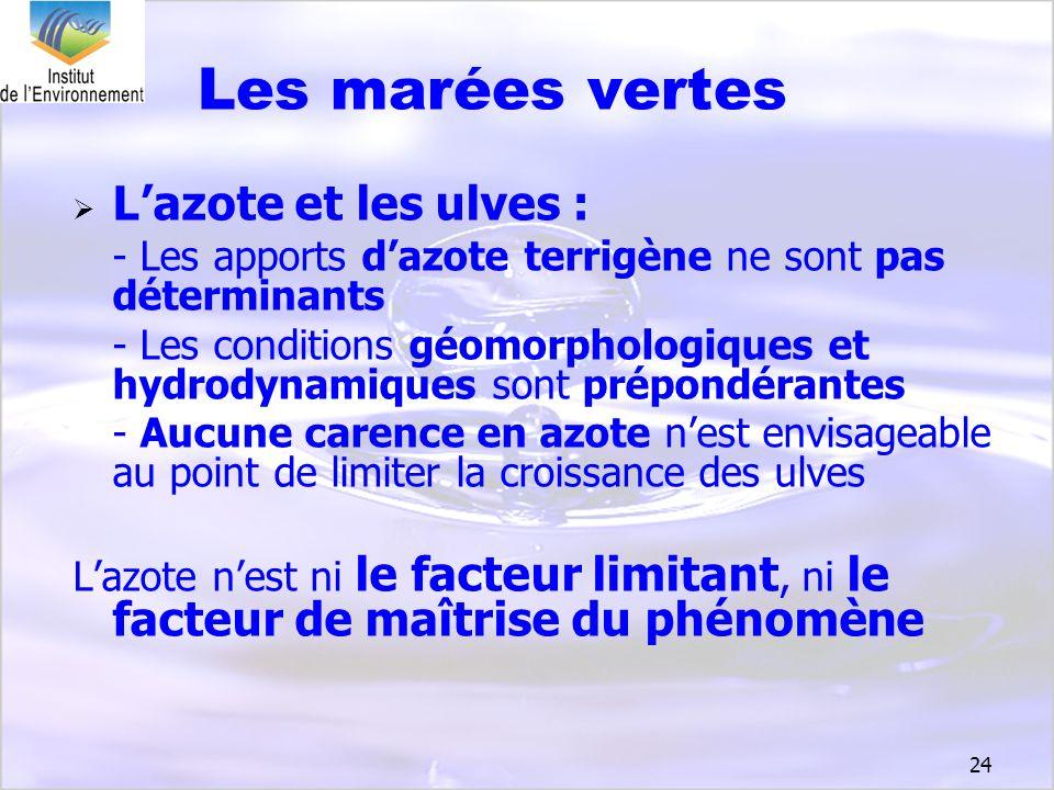 24 Les marées vertes Lazote et les ulves : - Les apports dazote terrigène ne sont pas déterminants - Les conditions géomorphologiques et hydrodynamiqu